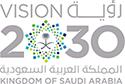 2030 vision 2